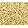 Seedbead 10/0 Mettallic Light Gold Loose Solgel